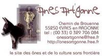 Anes Art'Gonne