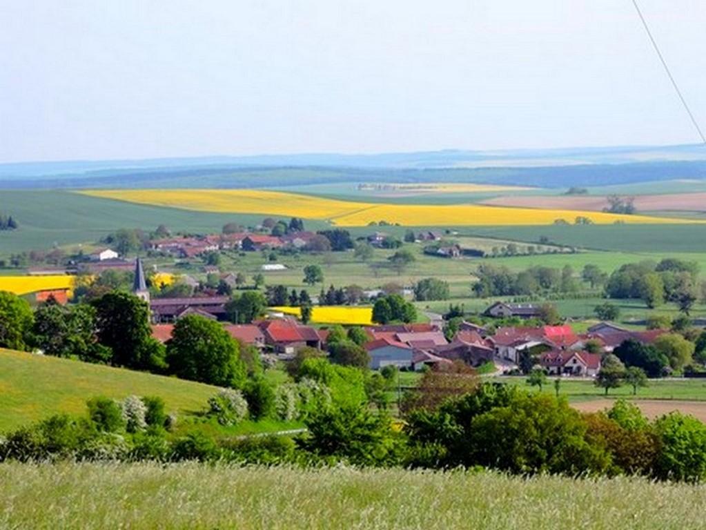 Champs de colza et village de Bethelainville