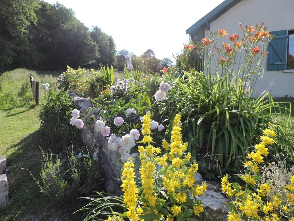 Muret recouvert de fleurs vivaces